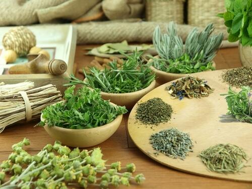 Herbs-Herbal Tea